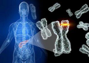 telomeros y telomerasa