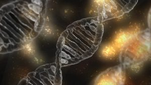 Cadena ADN