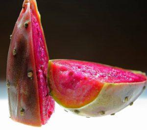 Fruto del nopal
