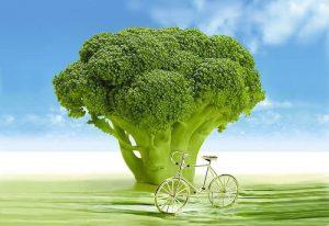 Alimentos antiedad. El brocoli.