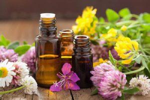 Sauzgatillo, efectos secundarios y contraindicaciones